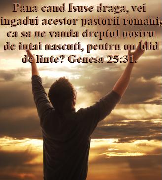Pana cand Isuse draga, vei ingadui acestor pastori romani ca sa ne vanda, pentru un blid de linte.
